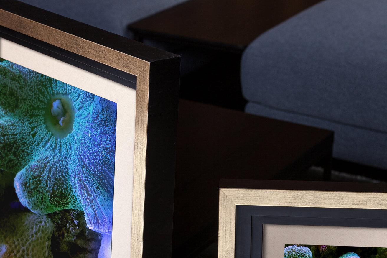Rama do obrazów i zdjęć złota z czarnym zagłębieniem Manila AA