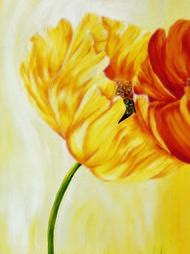 Dancing Tulips I