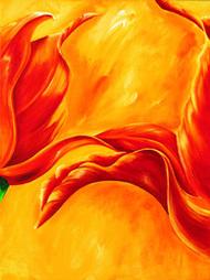 Tripple of tulips I
