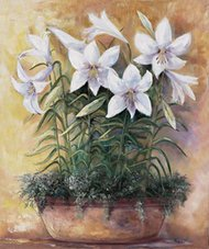 White lilies in bowl