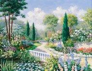 Kwiaty i cyprysy