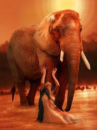 ELEPHANT RITUAL