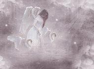 SWAN ANGEL