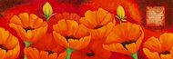 Bukiet anemonek w pomarańczy