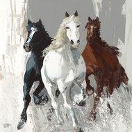 Konie I