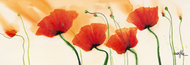 Kwiaty Isy