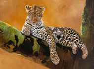 Leopard z Serengeti