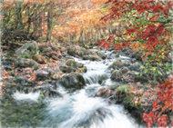 Potok w jesień ubrany