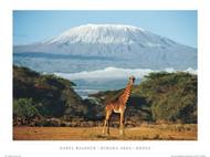 Kimana Area,Kenia