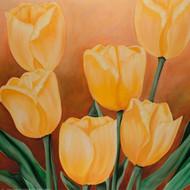 Tulipany I