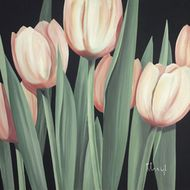 Harmonia tulipanów I