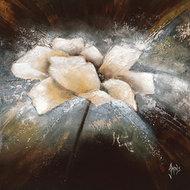 Fleur d´étoile II