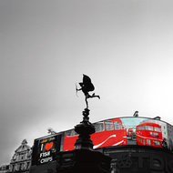 Love Picadilly