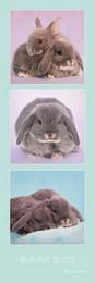 Rozkoszne króliczki