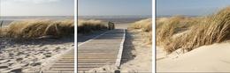 Dunes, tryptyk