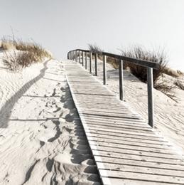 Dunes 7D
