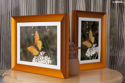 Rama do obrazów i zdjęć pomarańczowa wklęsła ALU 225-217