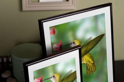 Rama do obrazów i zdjęć aluminiowa zaokrąglona ALU 7-316