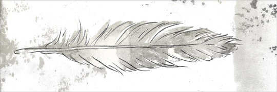 SILVER FEATHER I
