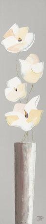 Kwiatowy kontrast II