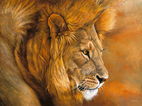 Lew z Serengeti