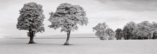 Edzell - Scotland