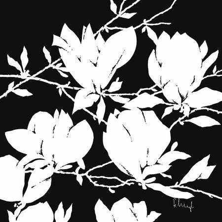 Białe i czarne magnolie