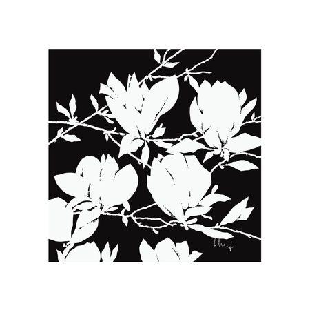 Czarna i biała magnolia